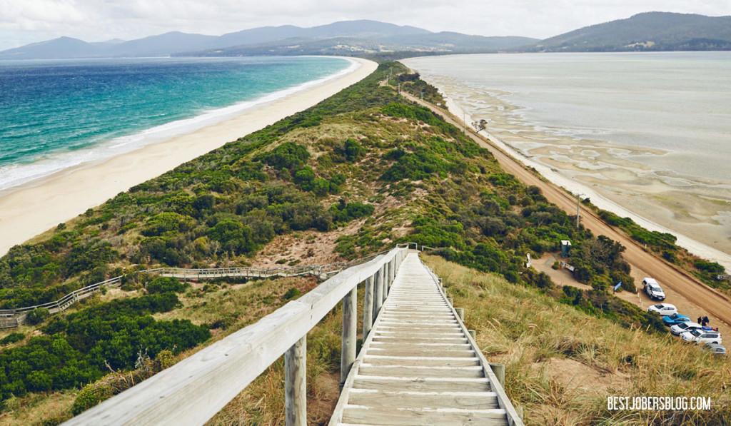 lookout tasmanie