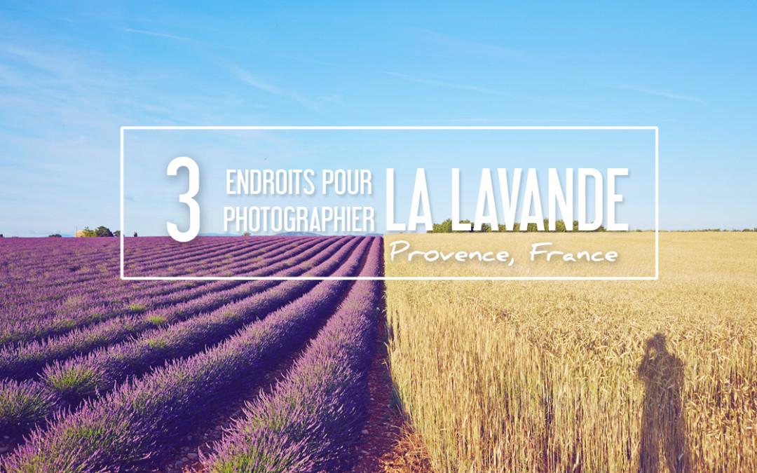LES 3 PLUS BEAUX ENDROITS POUR PHOTOGRAPHIER LA LAVANDE EN PROVENCE