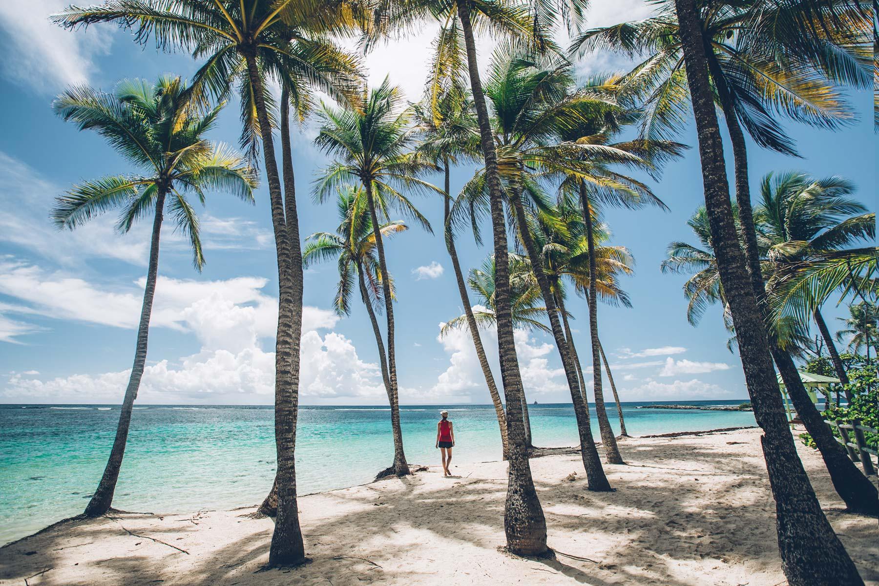 Plage de la Caravelle, Guadeloupe
