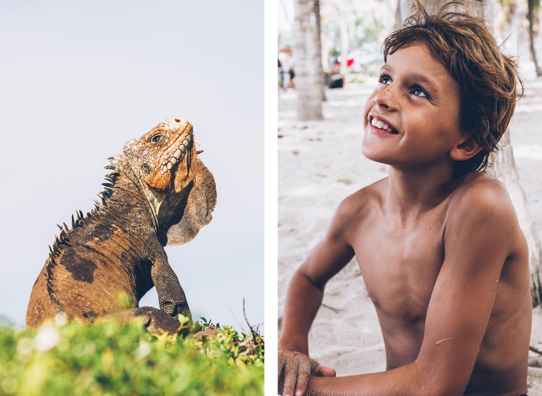 Excursion à petite terre: Iguane et rencontre