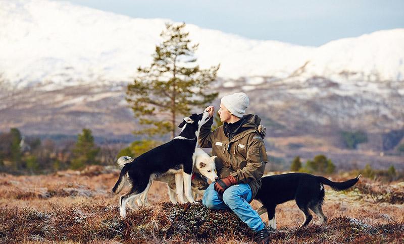 torkil chiens de traineau norvege tromso