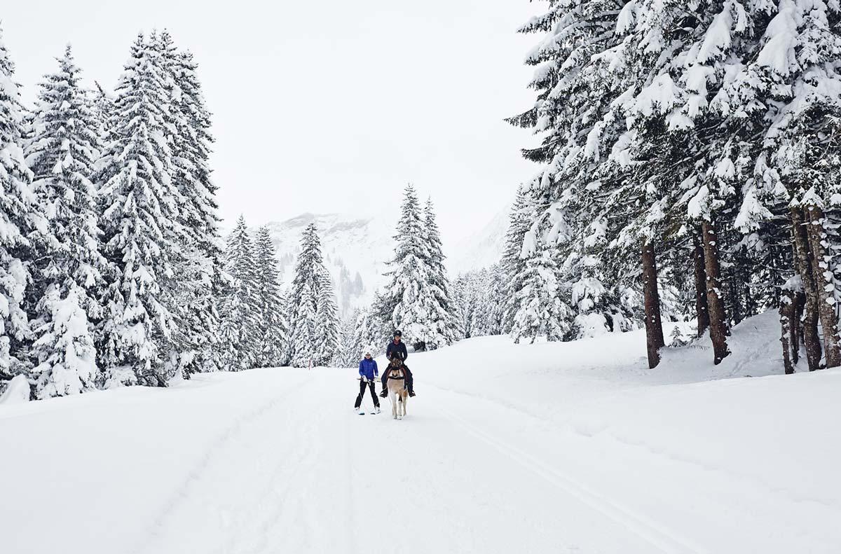 Ski-joering-diablerets-villars-suisse
