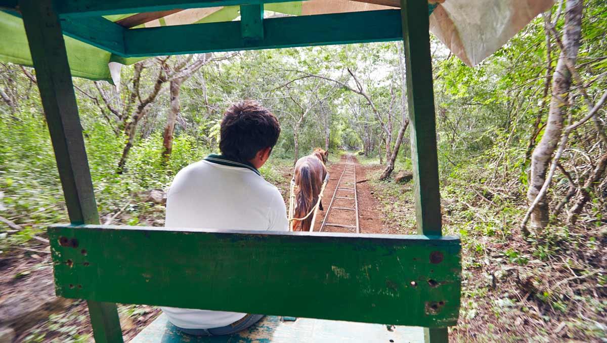 cenote-cheval-cuzama