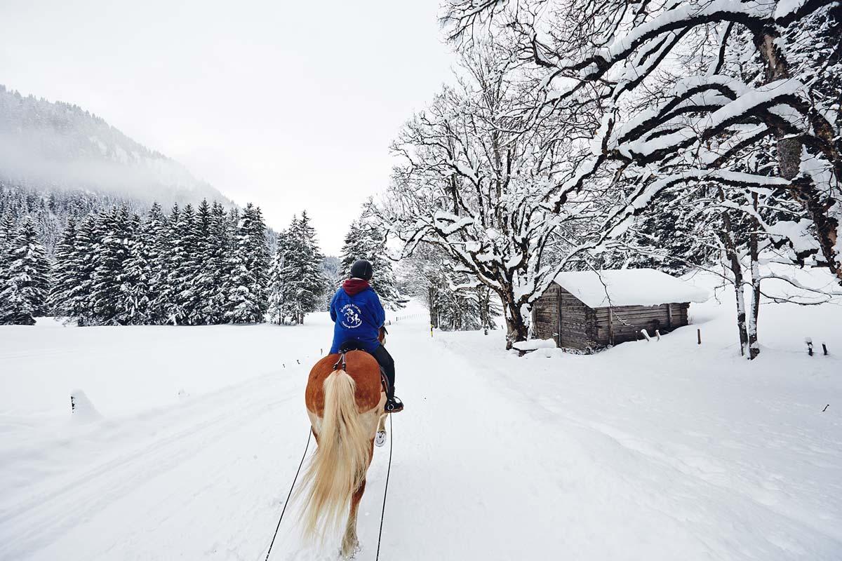 ski-joering-solalex-gryon