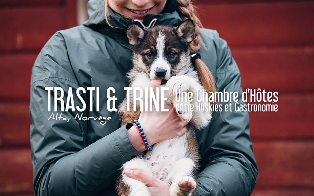 NORVÈGE |TRASTI & TRINE, une chambre d'hôtes entre Huskies et Gastronomie