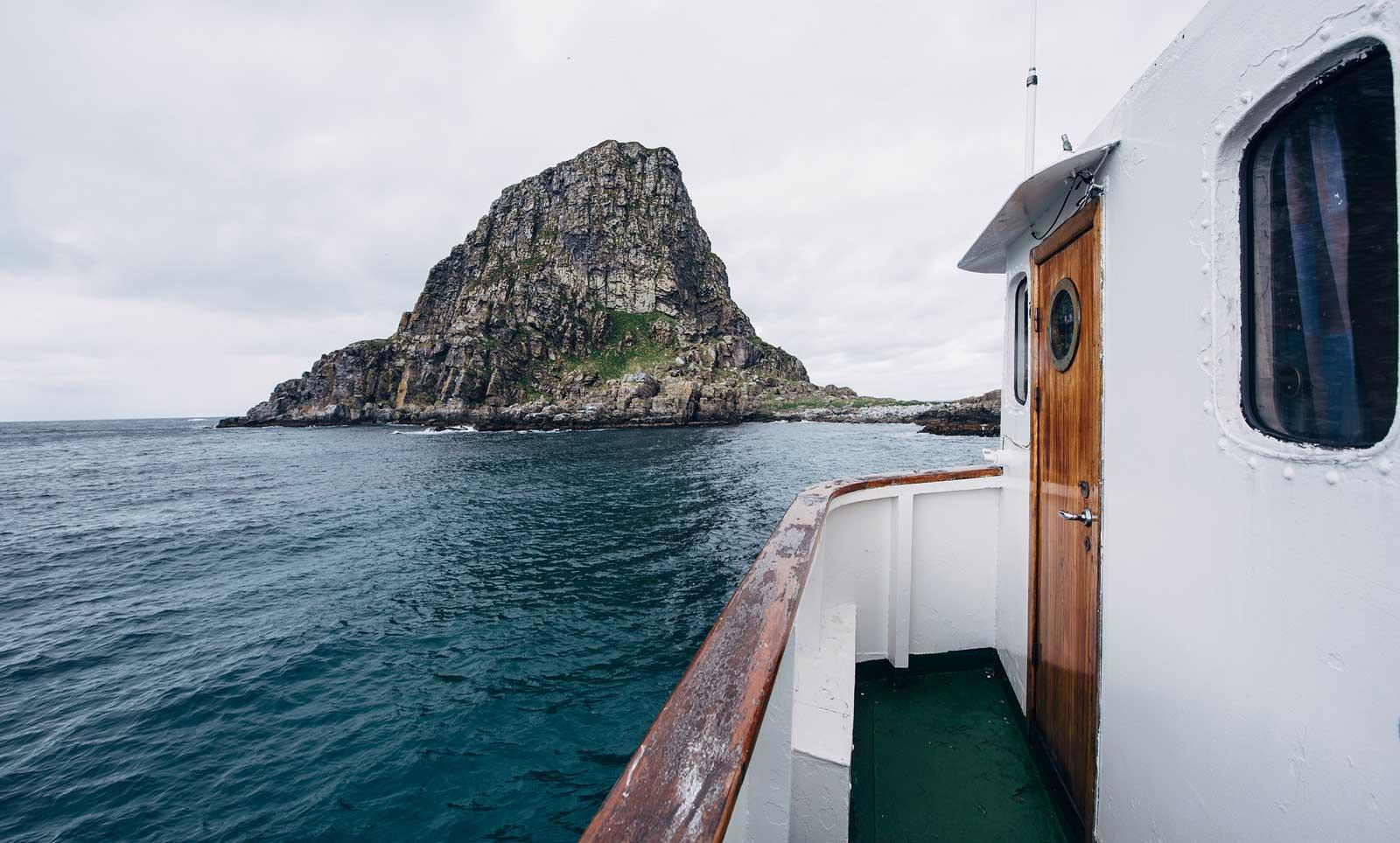 excursion pour voir puffins norvege