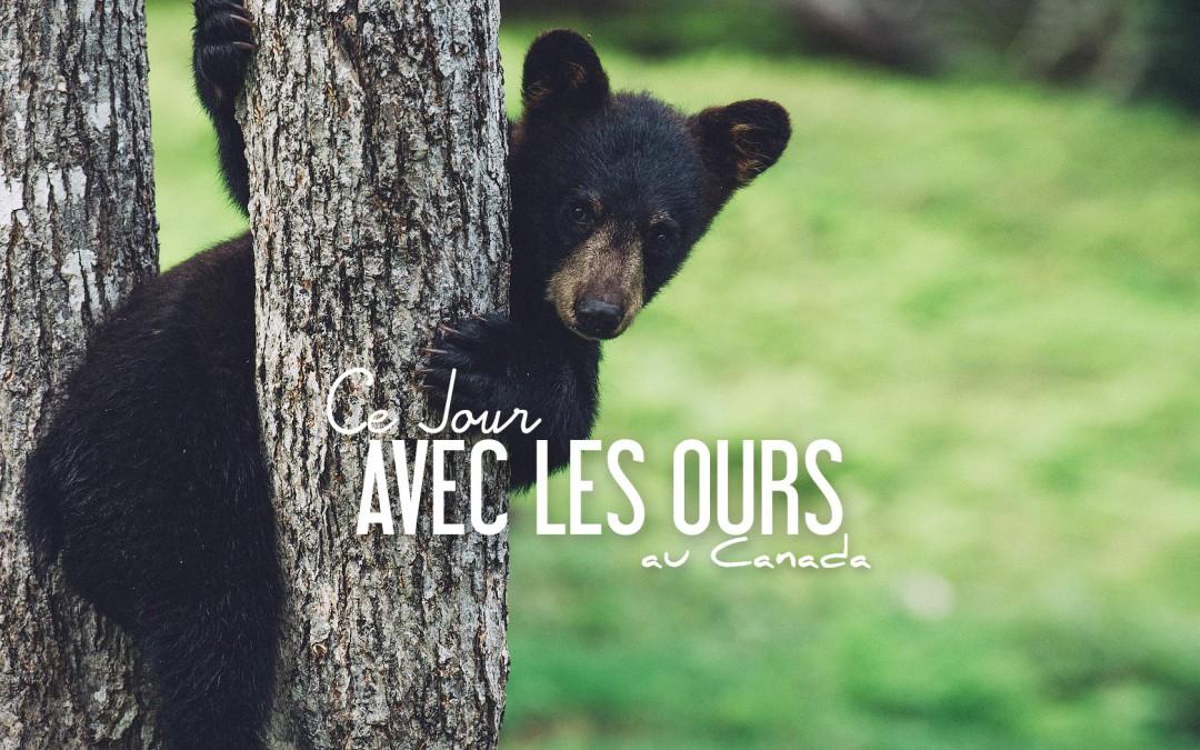 CANADA | CE JOUR AVEC LES OURS…