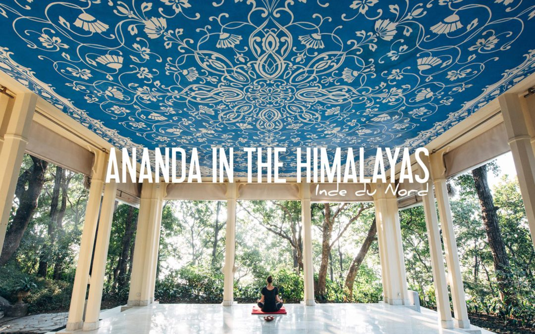 Ananda in the himalayas avis