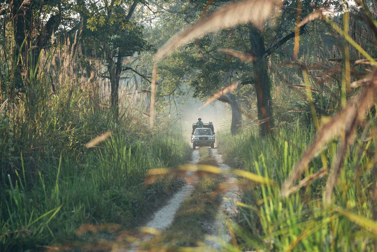 safari en jeep chitwan népal