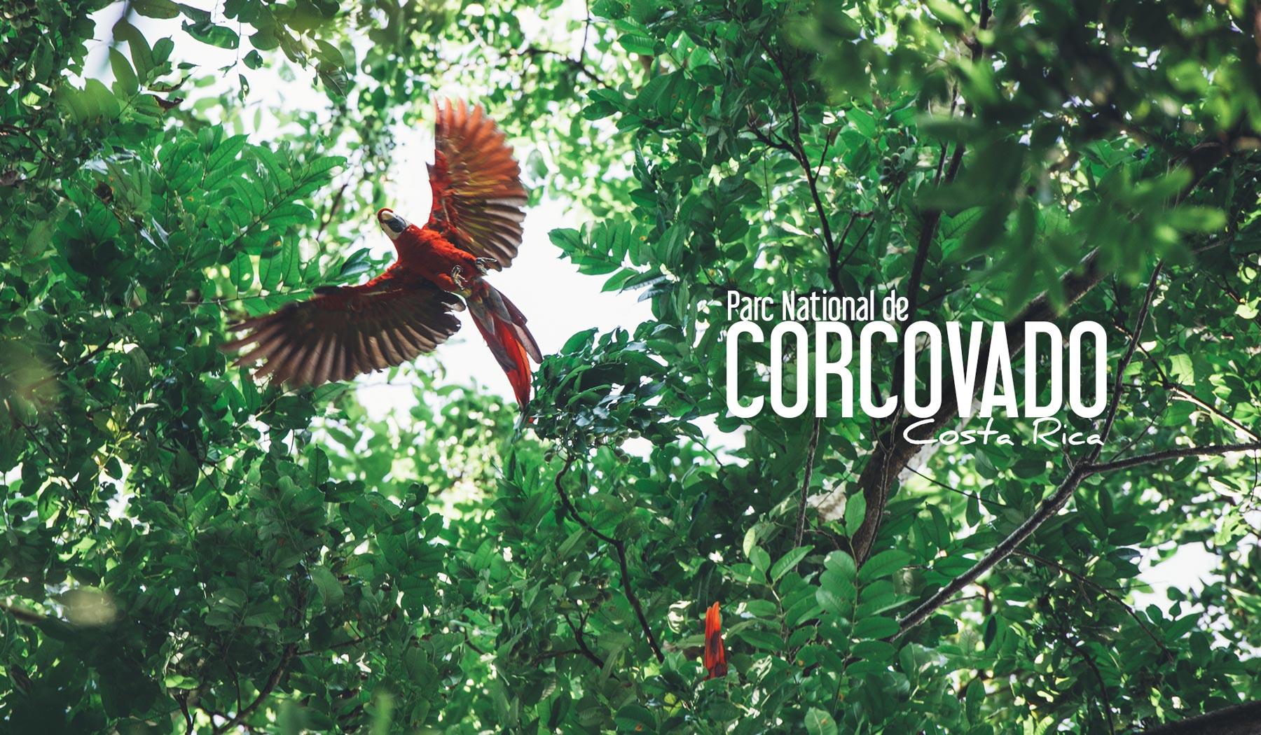 corcovado parc national costa rica blog voyage