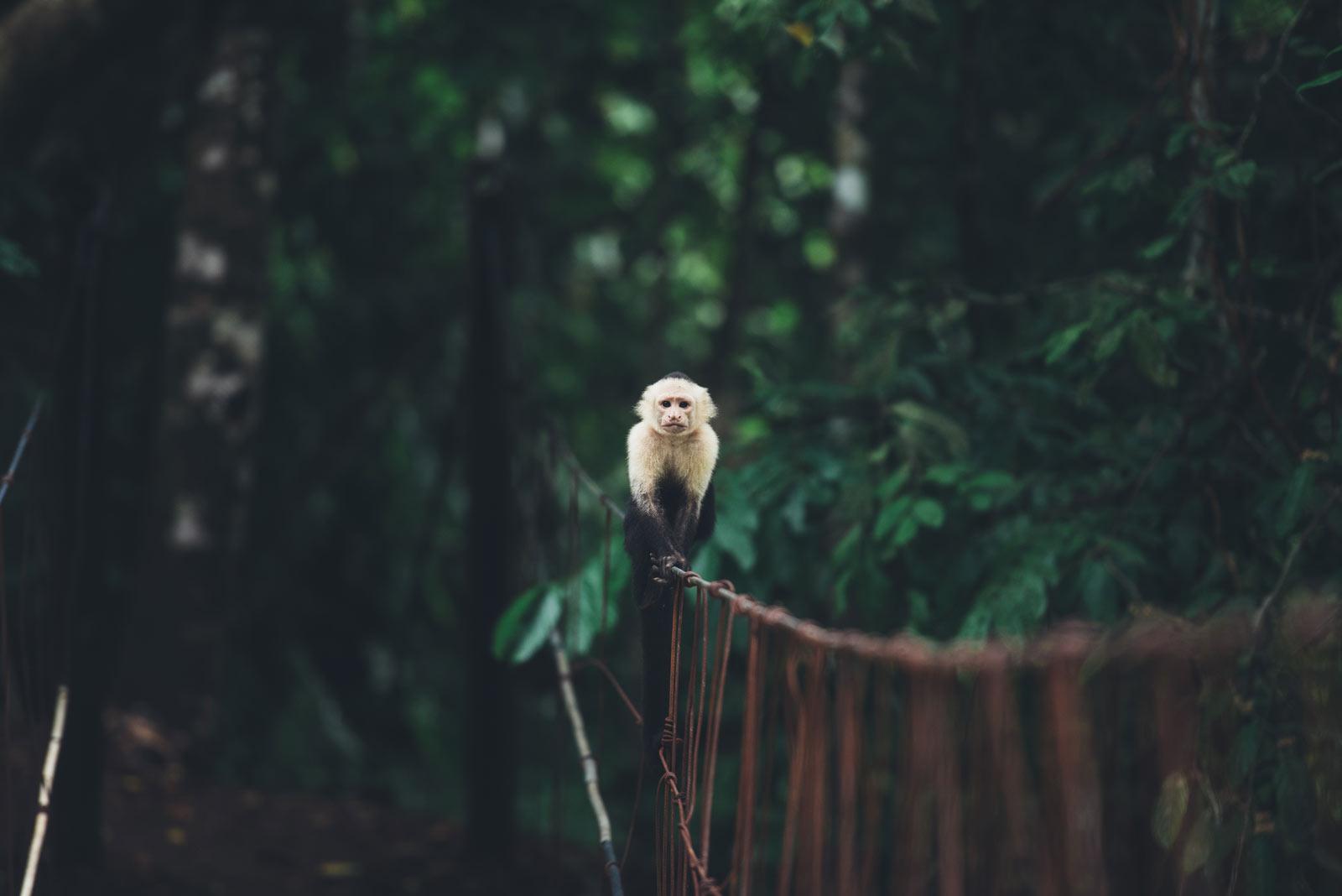 blog voyage conseil costa rica