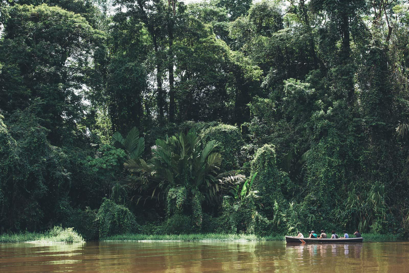 canoe kayak tortuguero costa rica