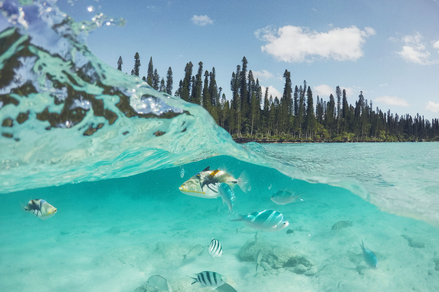 Ile des Pins, Nouvelle Calédonie