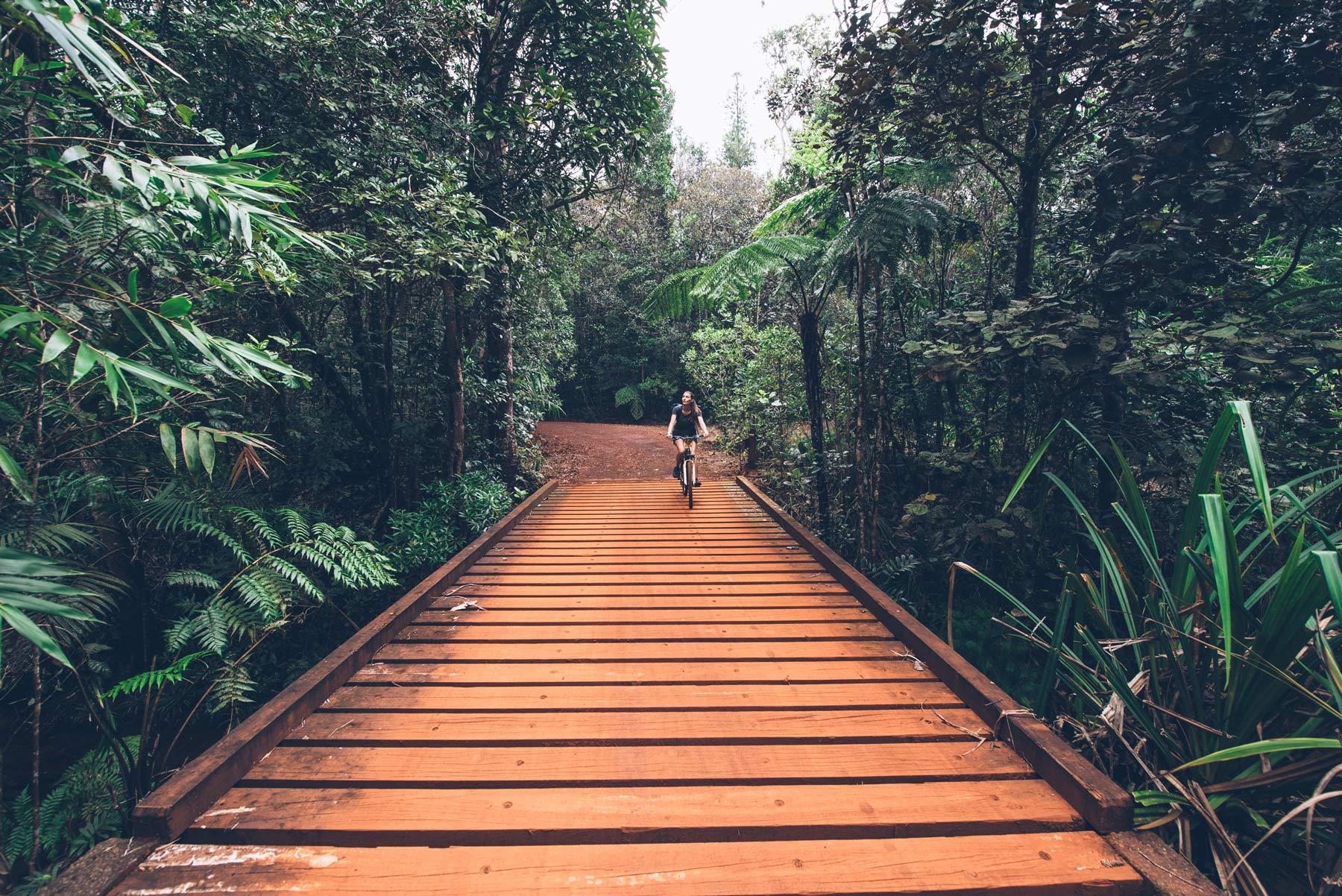 Parc de la rivière bleue, Nouvelle Calédonie