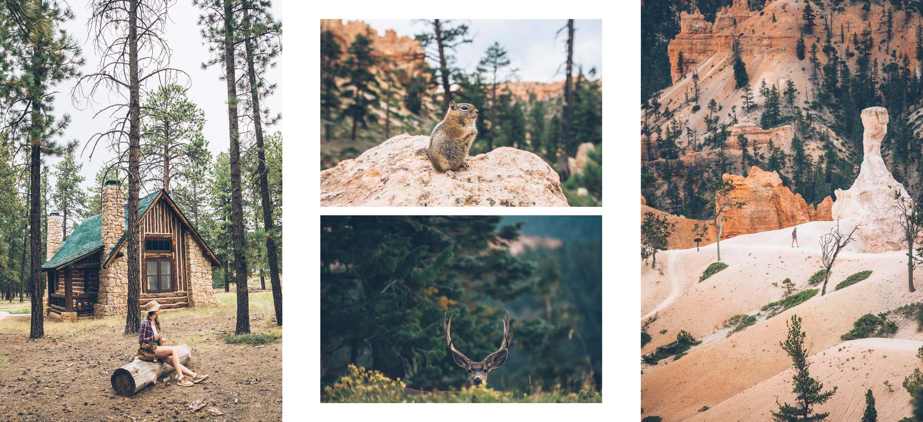 Bryce Canyon, Road Trip avec Authentik USA