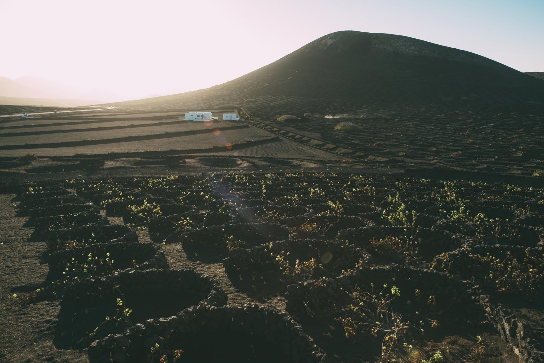 La Géria, Lanzarote