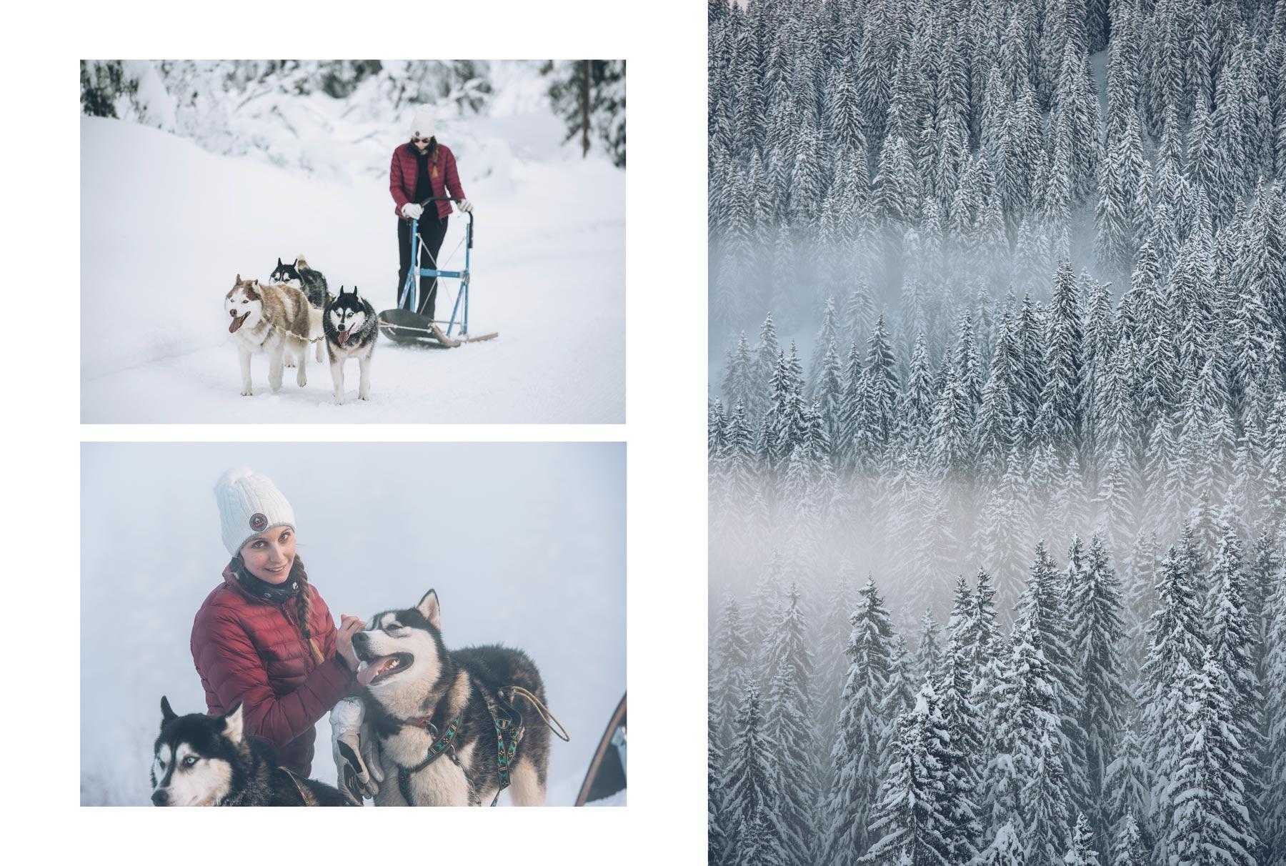 Avoriaz, Faire du chien de traineau dans les Alpes
