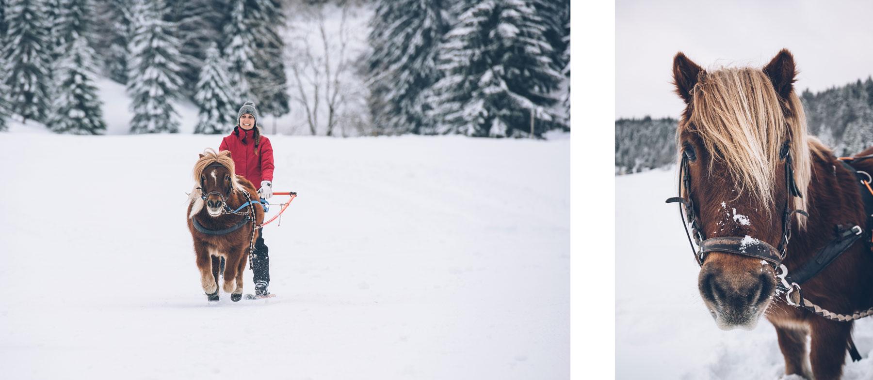 Montagnes du Jura, Ski Joering, Les Moussières