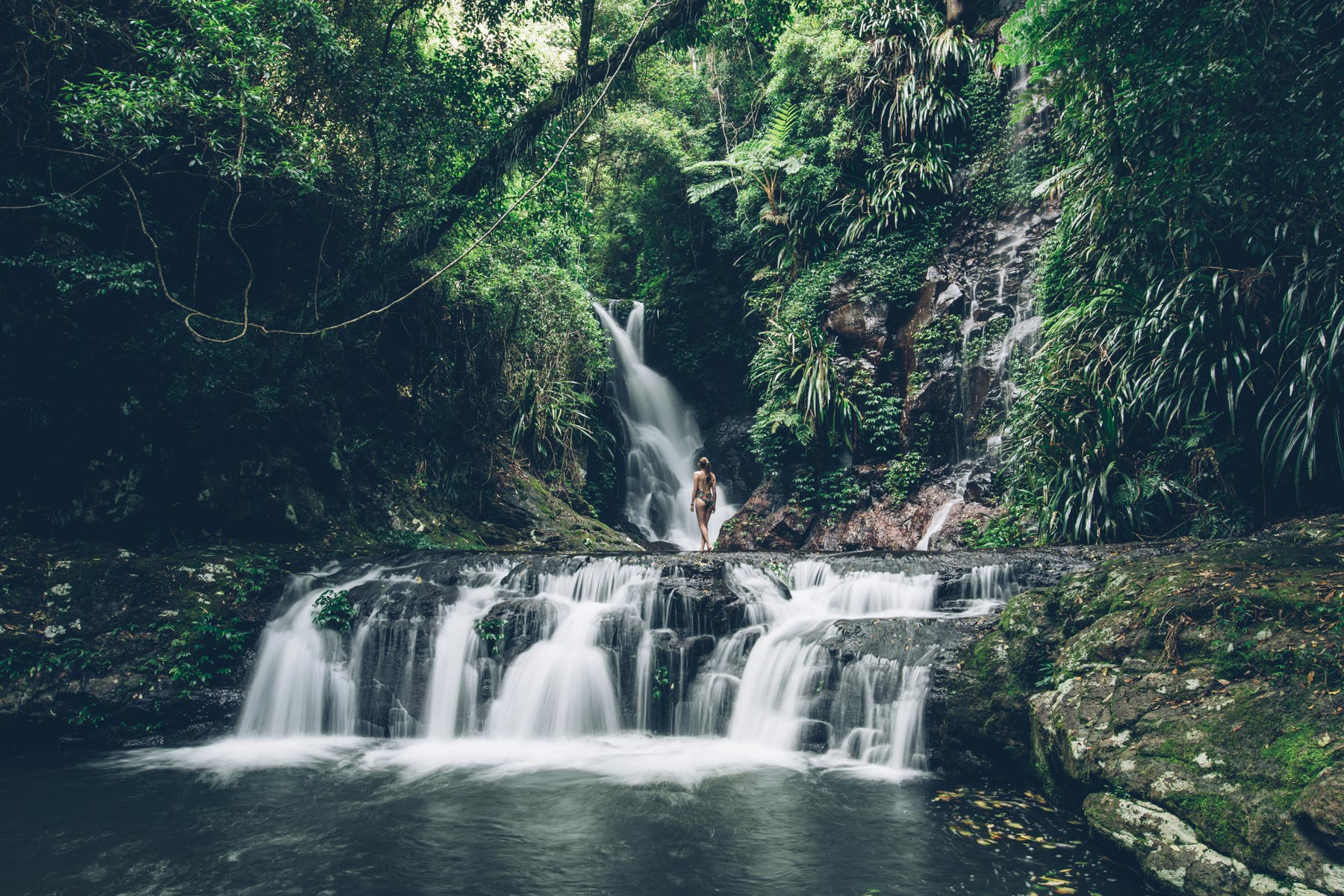 Elabana Falls, Queensland, Lamington National Park