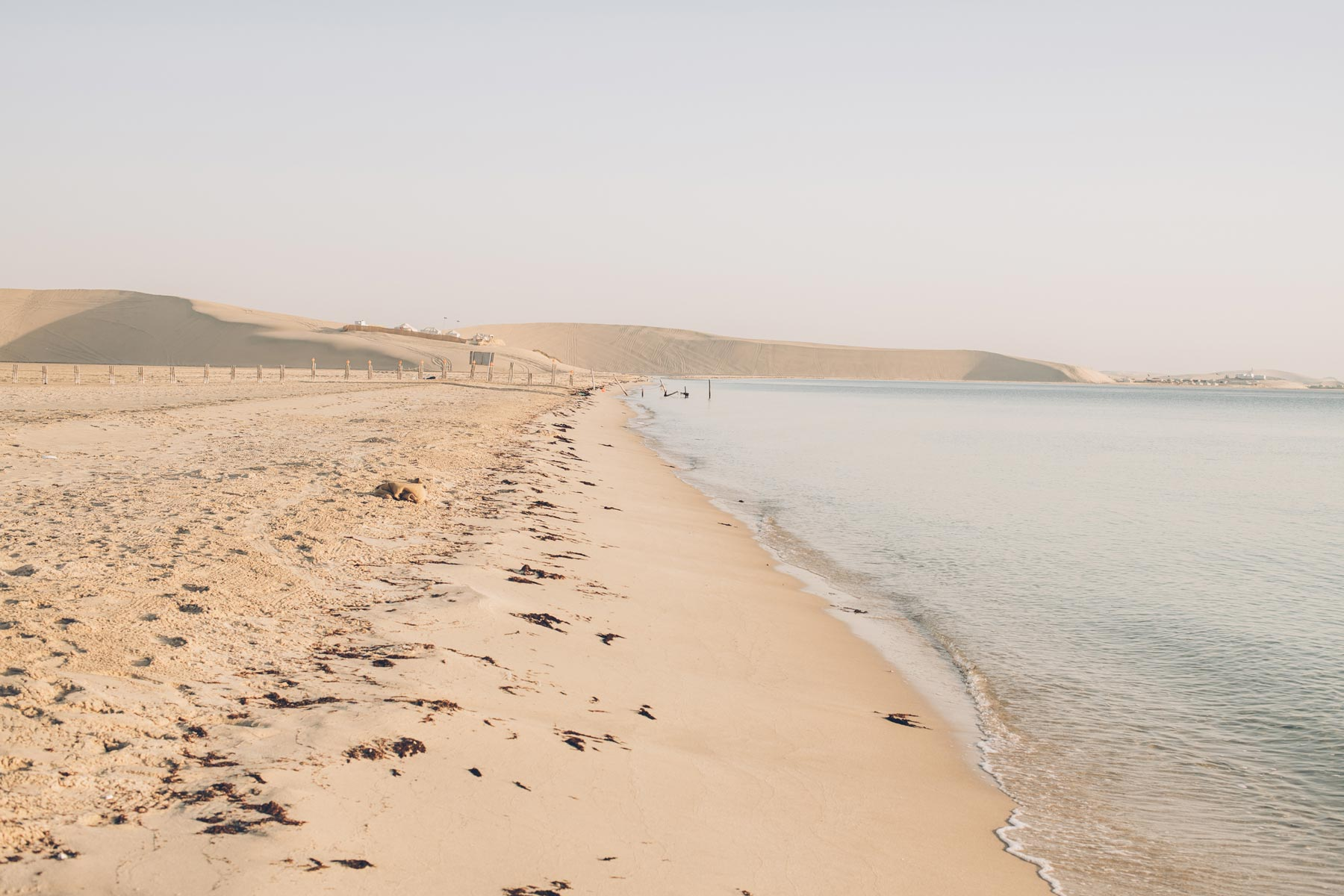 Desert et Mer au Qatar