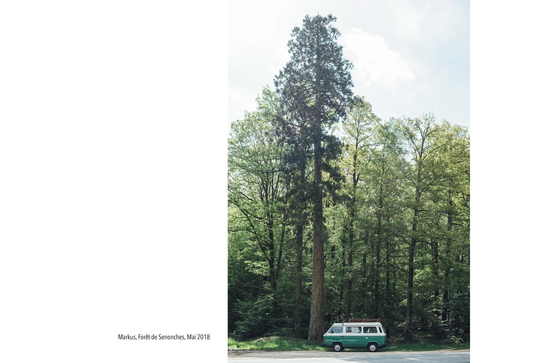 Combi VW T3 vert