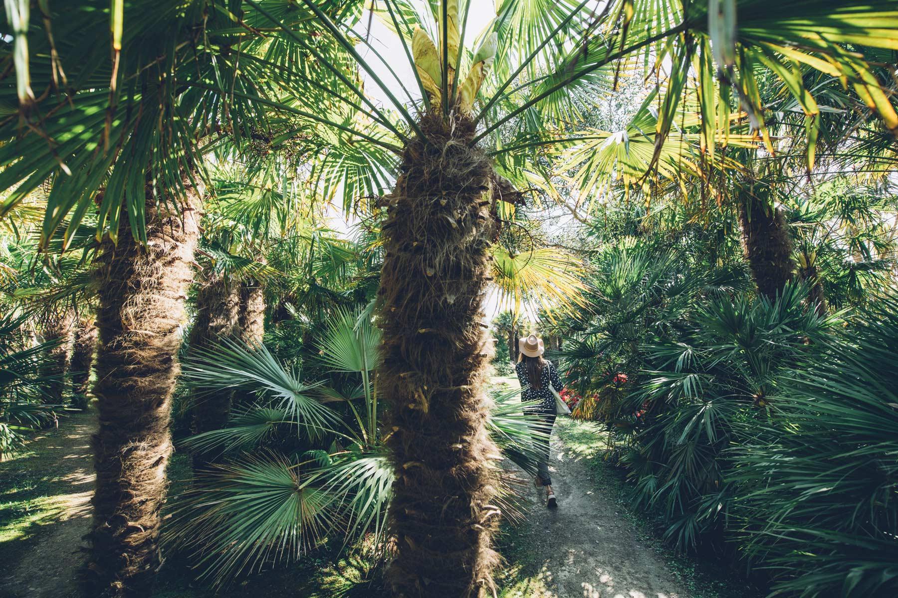Jardin Vauville, La Manche