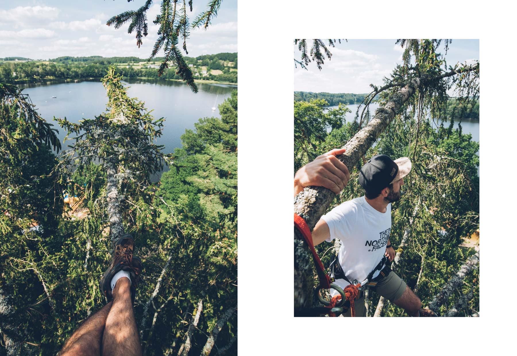 Grimpe d'arbre Arbr'acadabra