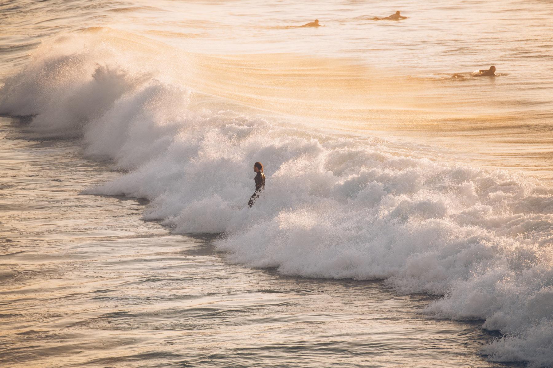 Surfeur Australien, Sydney