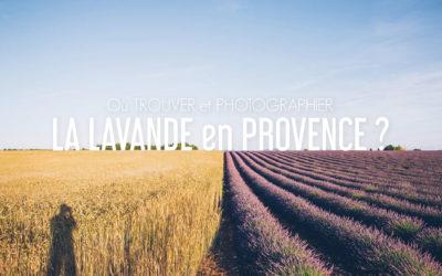 LES BEAUX ENDROITS POUR PHOTOGRAPHIER LA LAVANDE EN PROVENCE