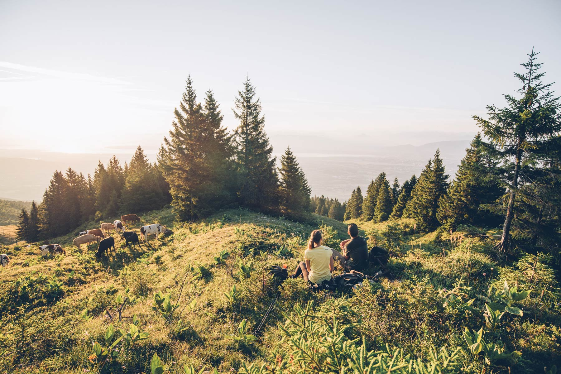 Randonnée Massif du Jura