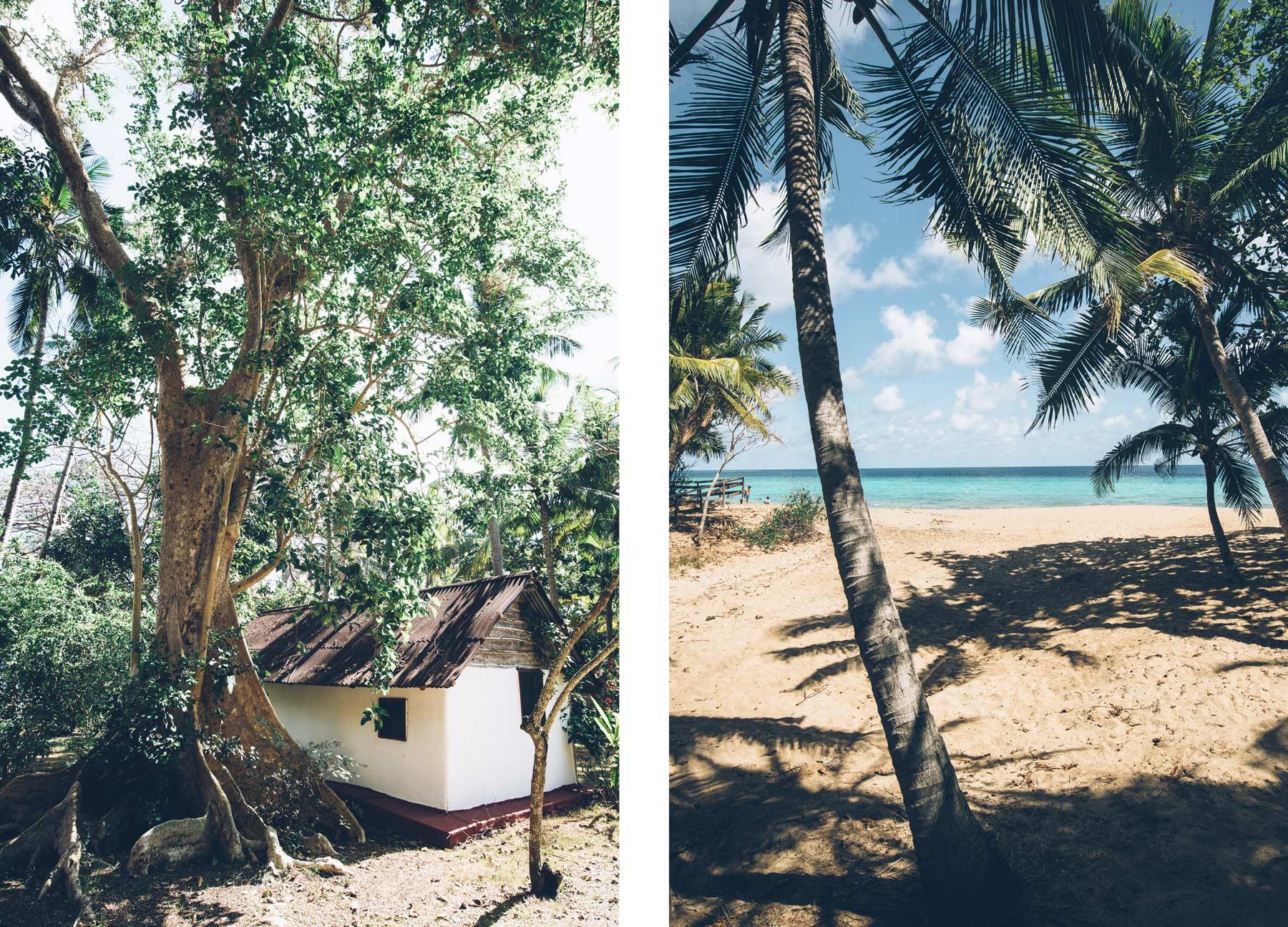 Jardin Maore, Mayotte