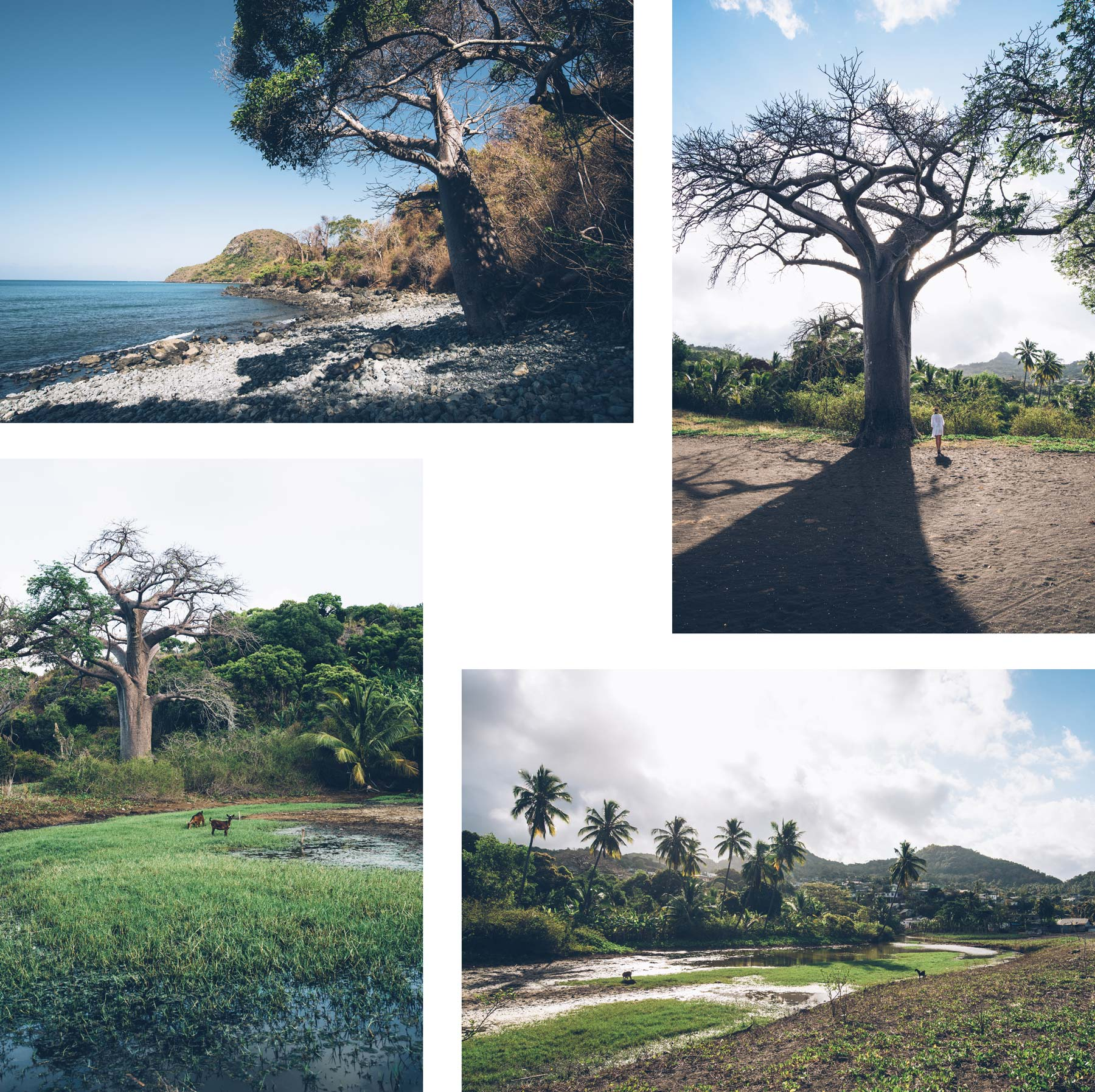 Sazilet, Mayotte