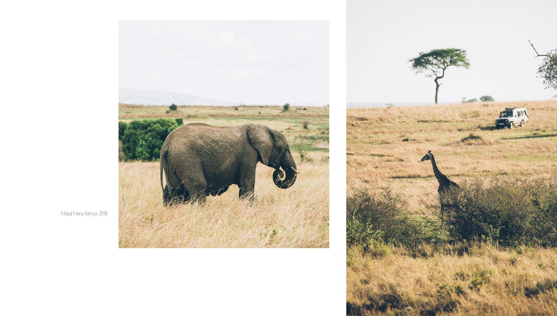 Safari Kenya, Masai Mara