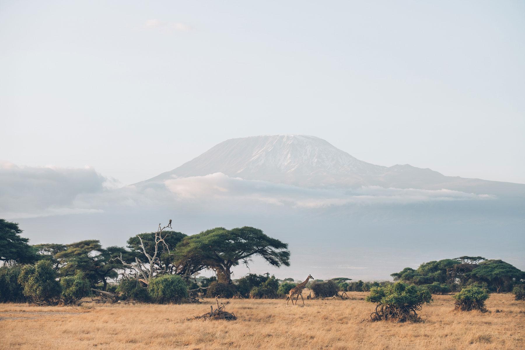 Vue sur le Kilimandjaro depuis le parc national d'Amboseli, Kenya