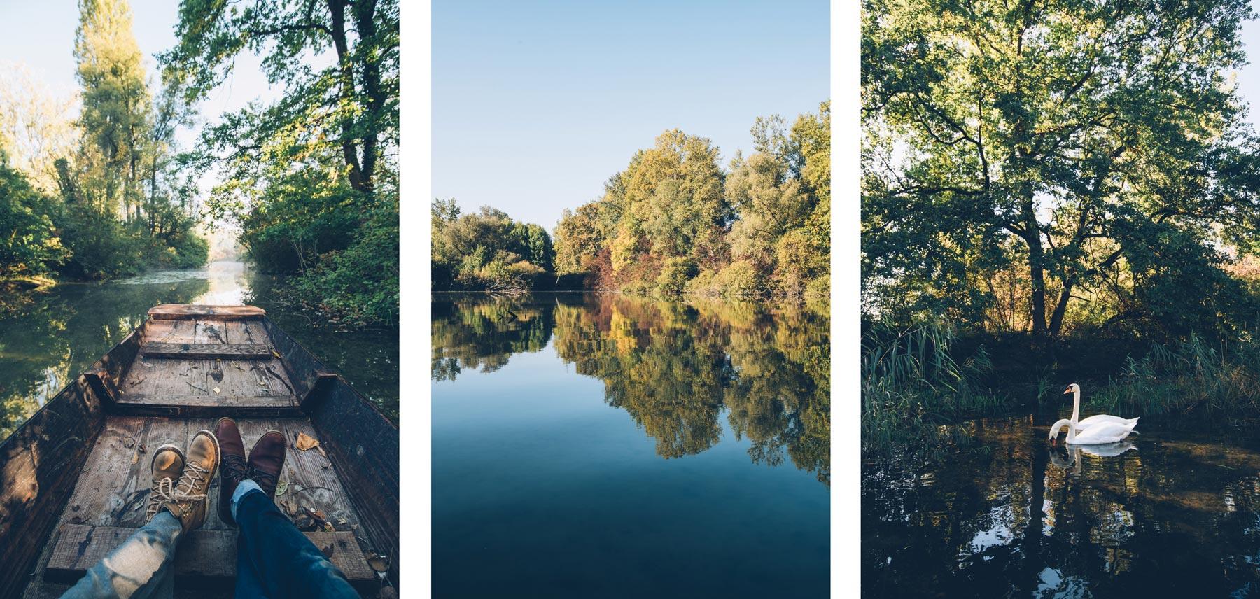 Balade nature près de Strasbourg à Rhinau
