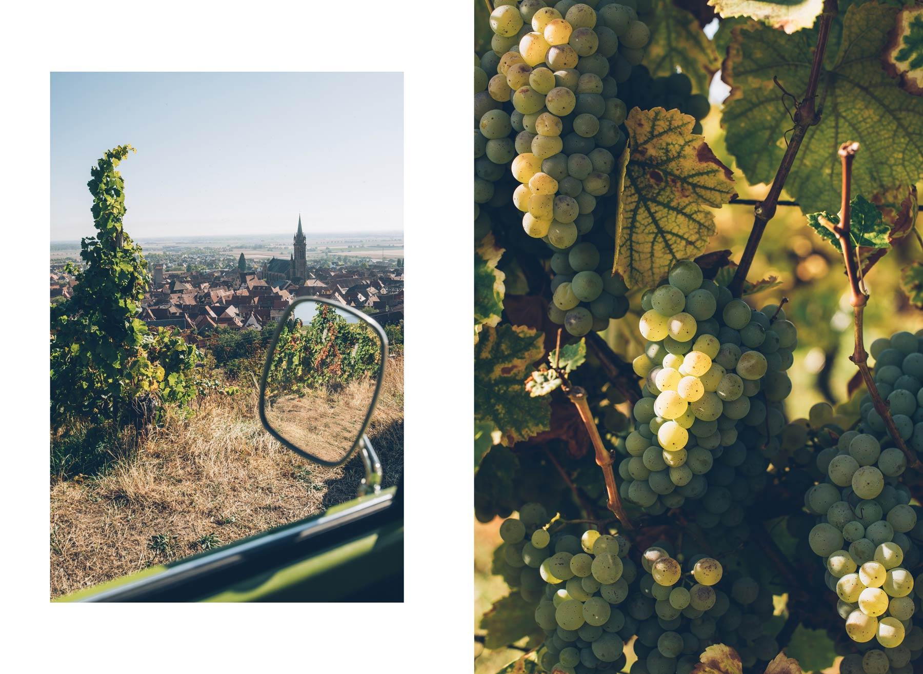 Route des vins en combi VW, Alsace