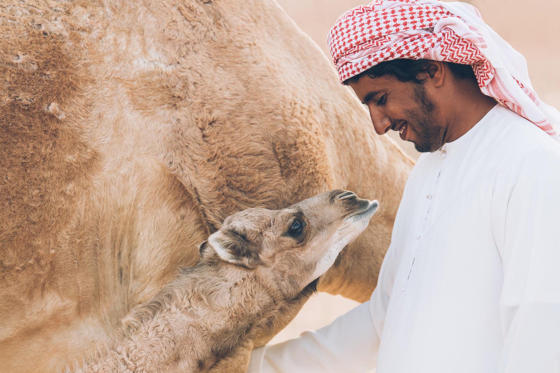 Nomadic Camp, Oman
