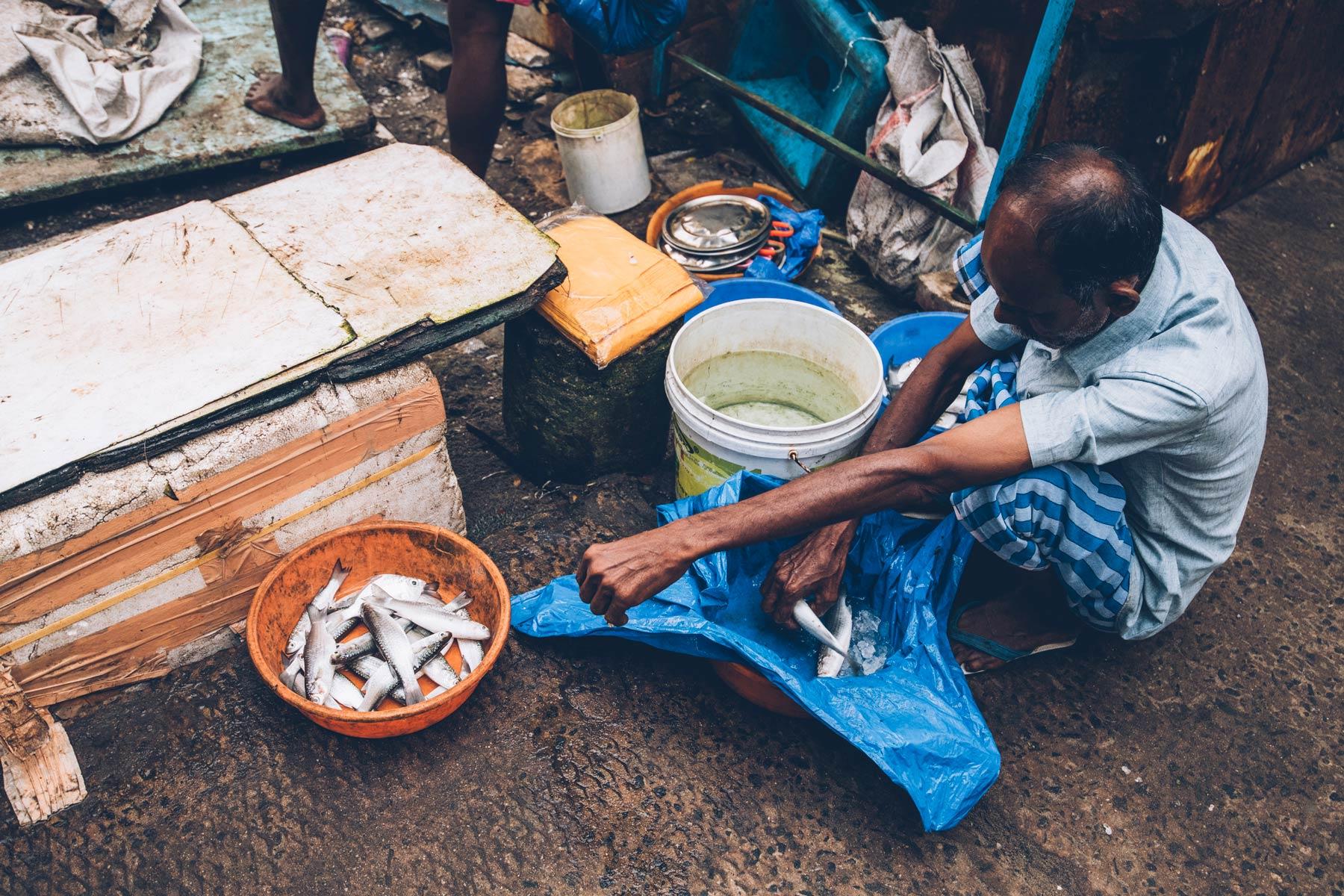 La criée, Cochin, Kerala