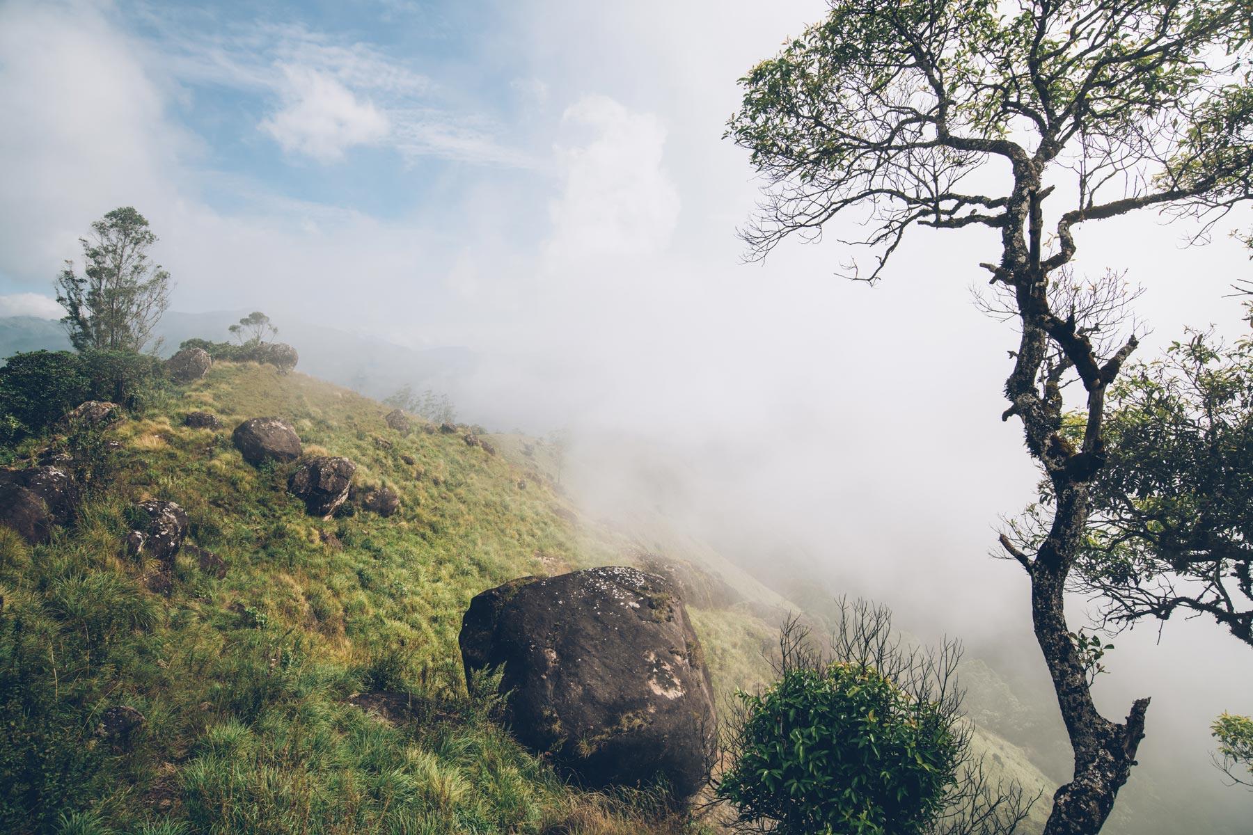 Inde, Montagne Kerala