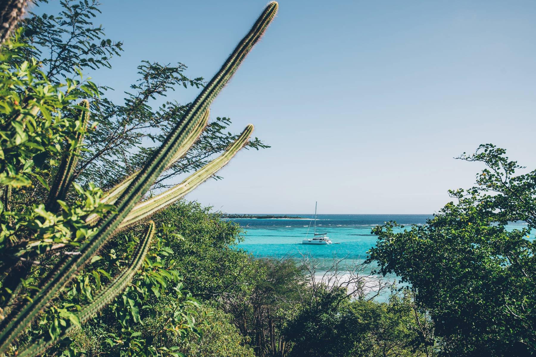 Tobago Cays, St Vincent et les Grenadines