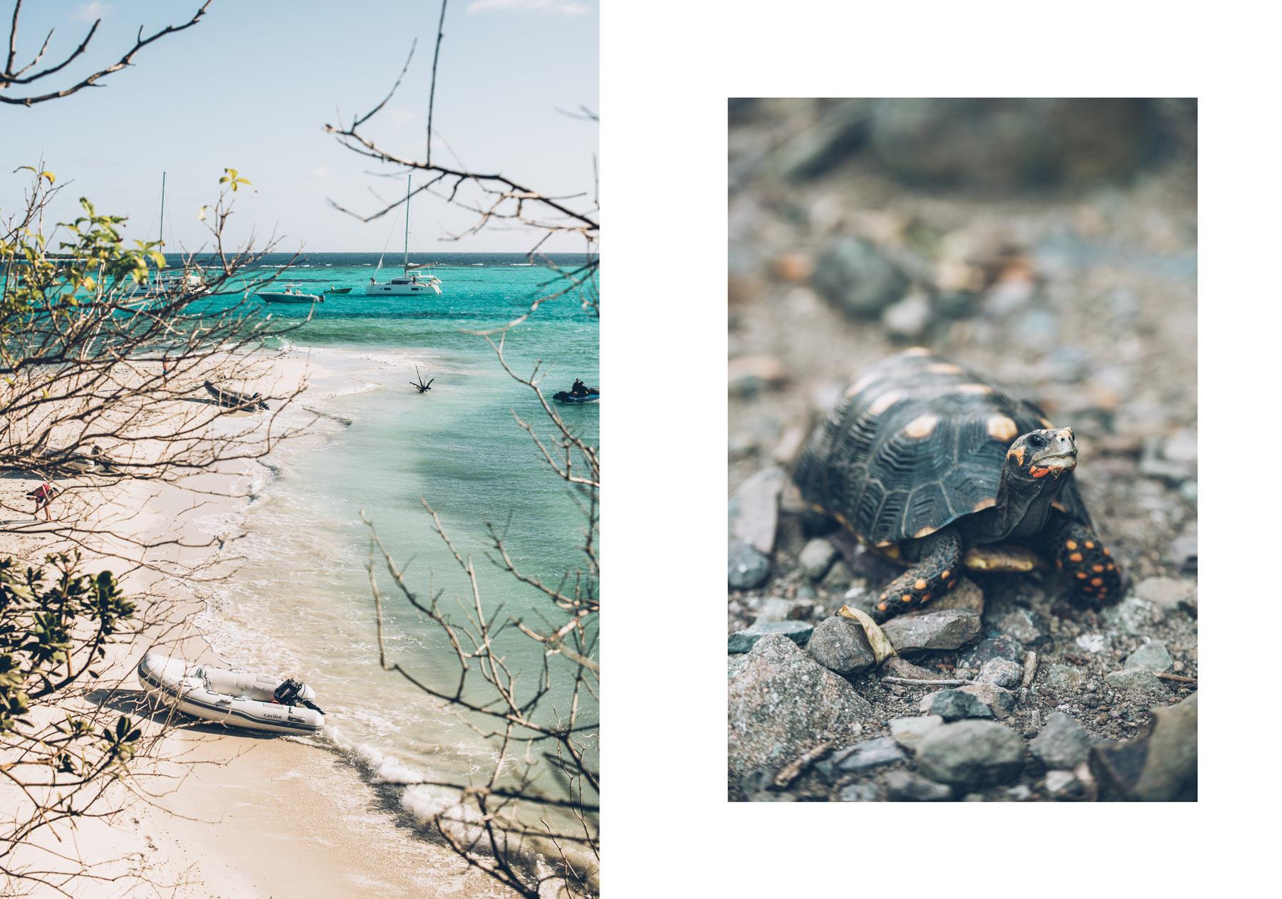 Caraibes croisière