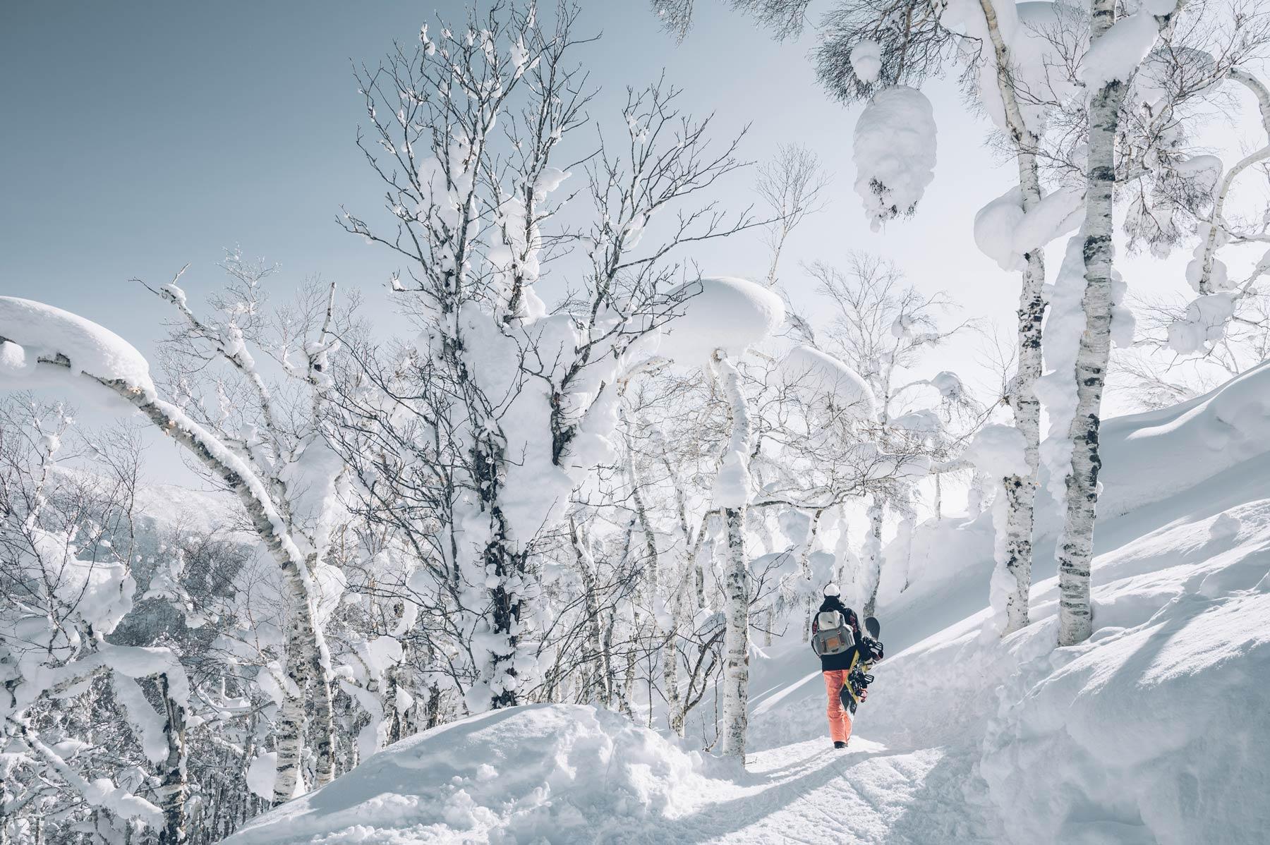 L'hiver au Japon, Hokkaido