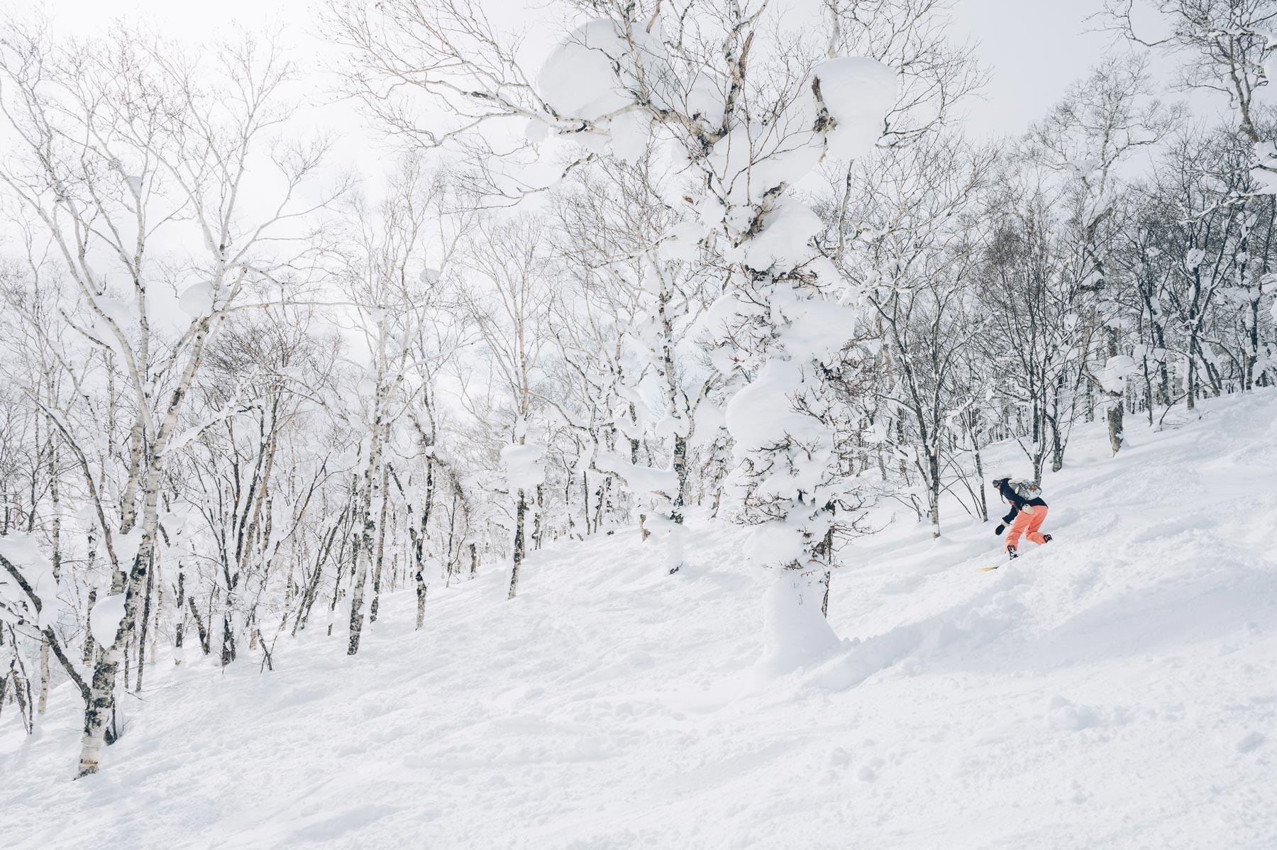 Le neige exceptionnelle du Japon
