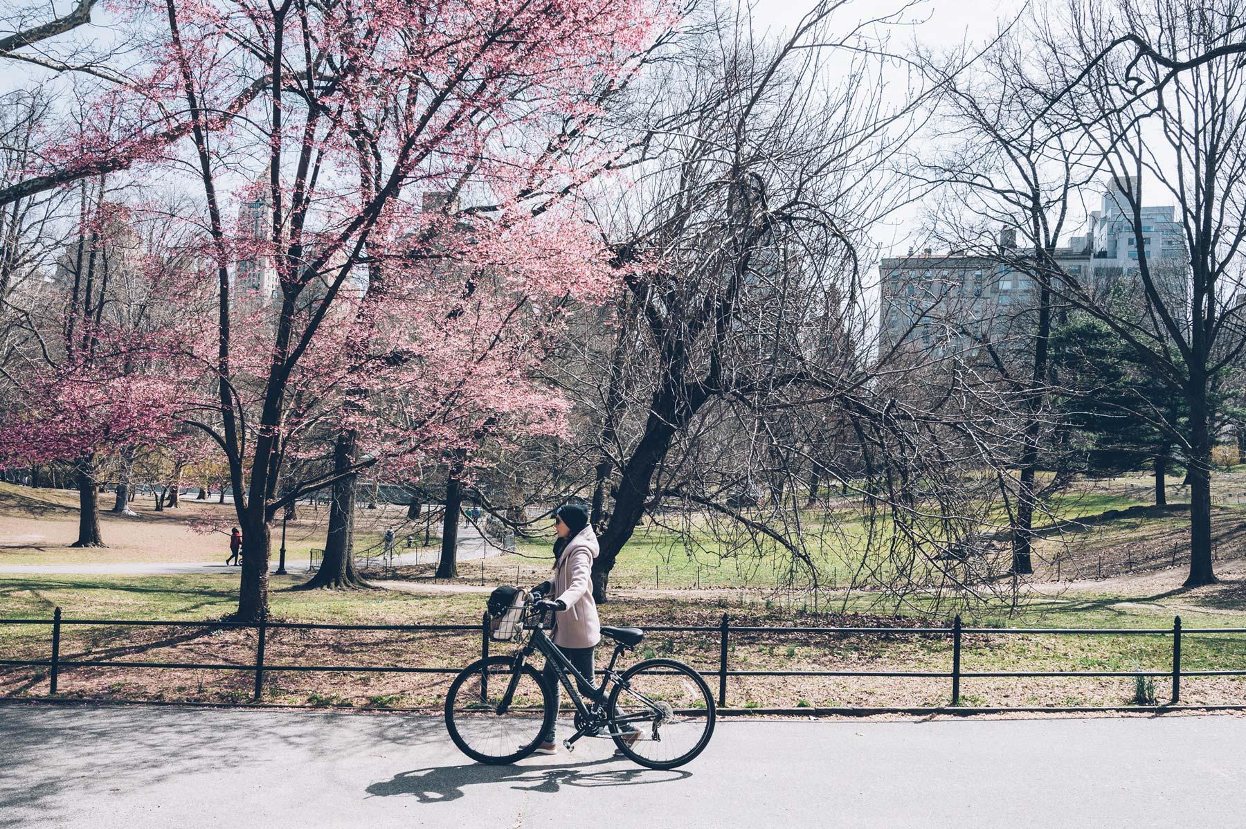 Central Park à Vélo avec New York en français