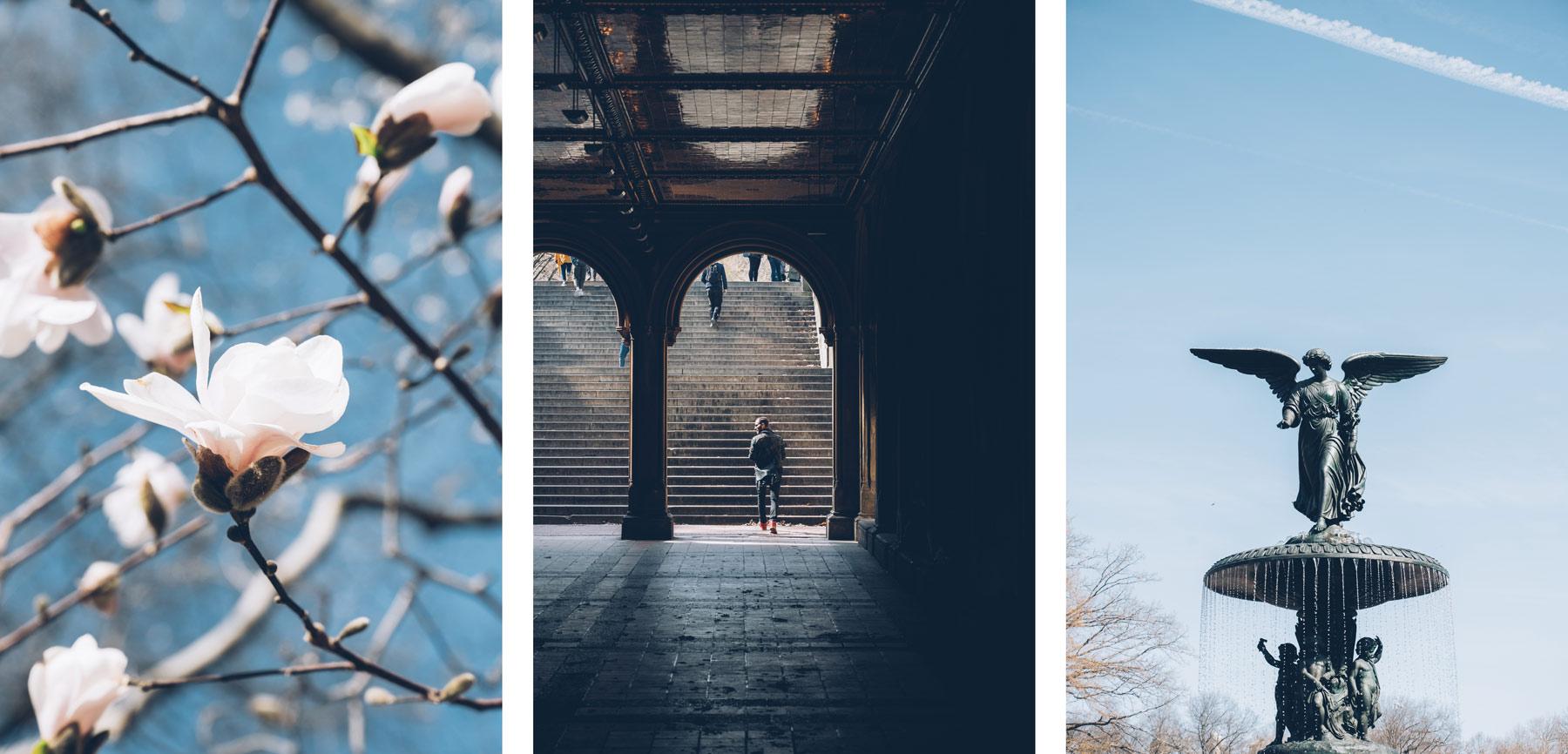 Visite insolite de Central Park avec New York en francais