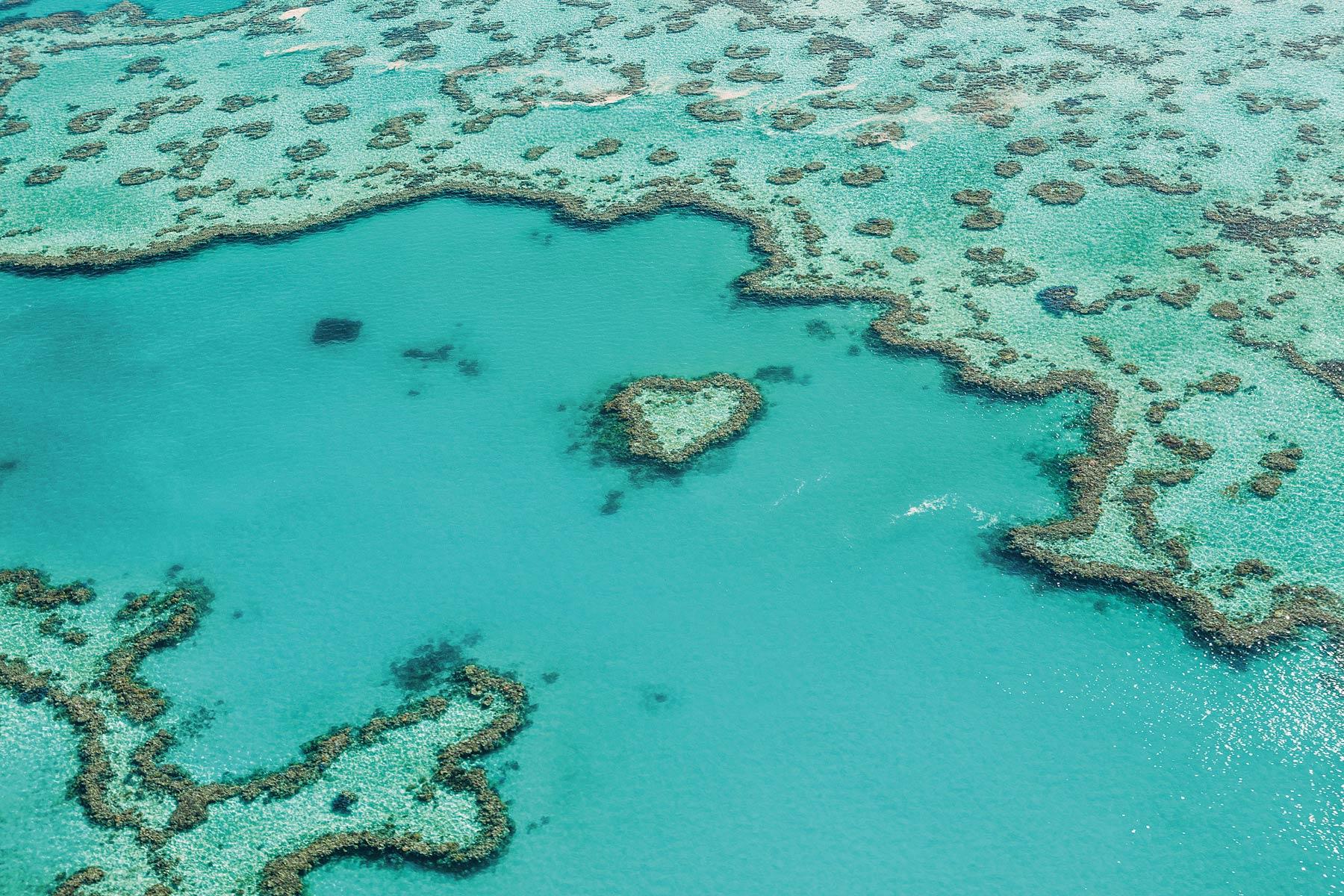 Coeur de corail, Australie