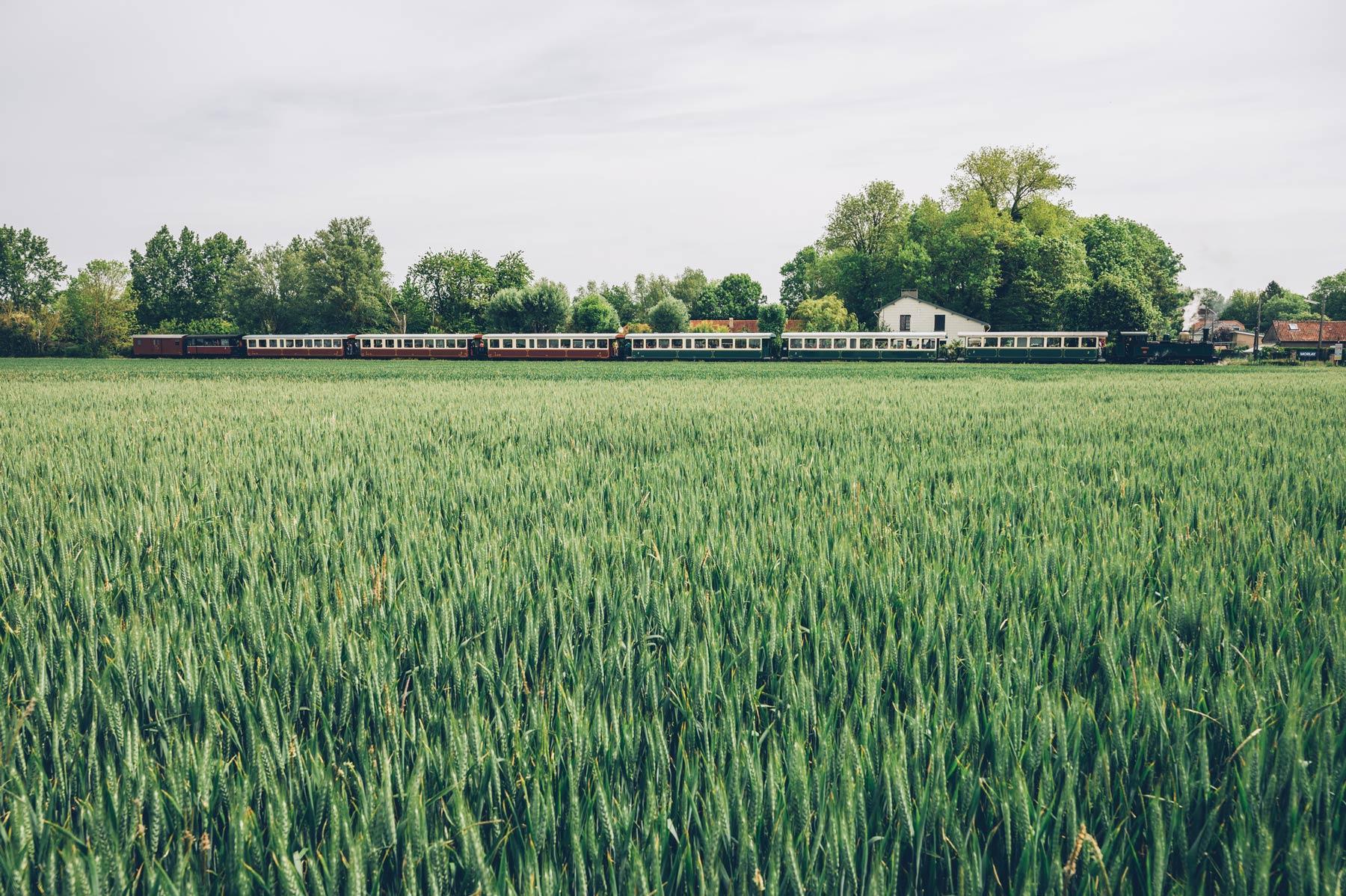 Train à vapeur, Baie de Somme