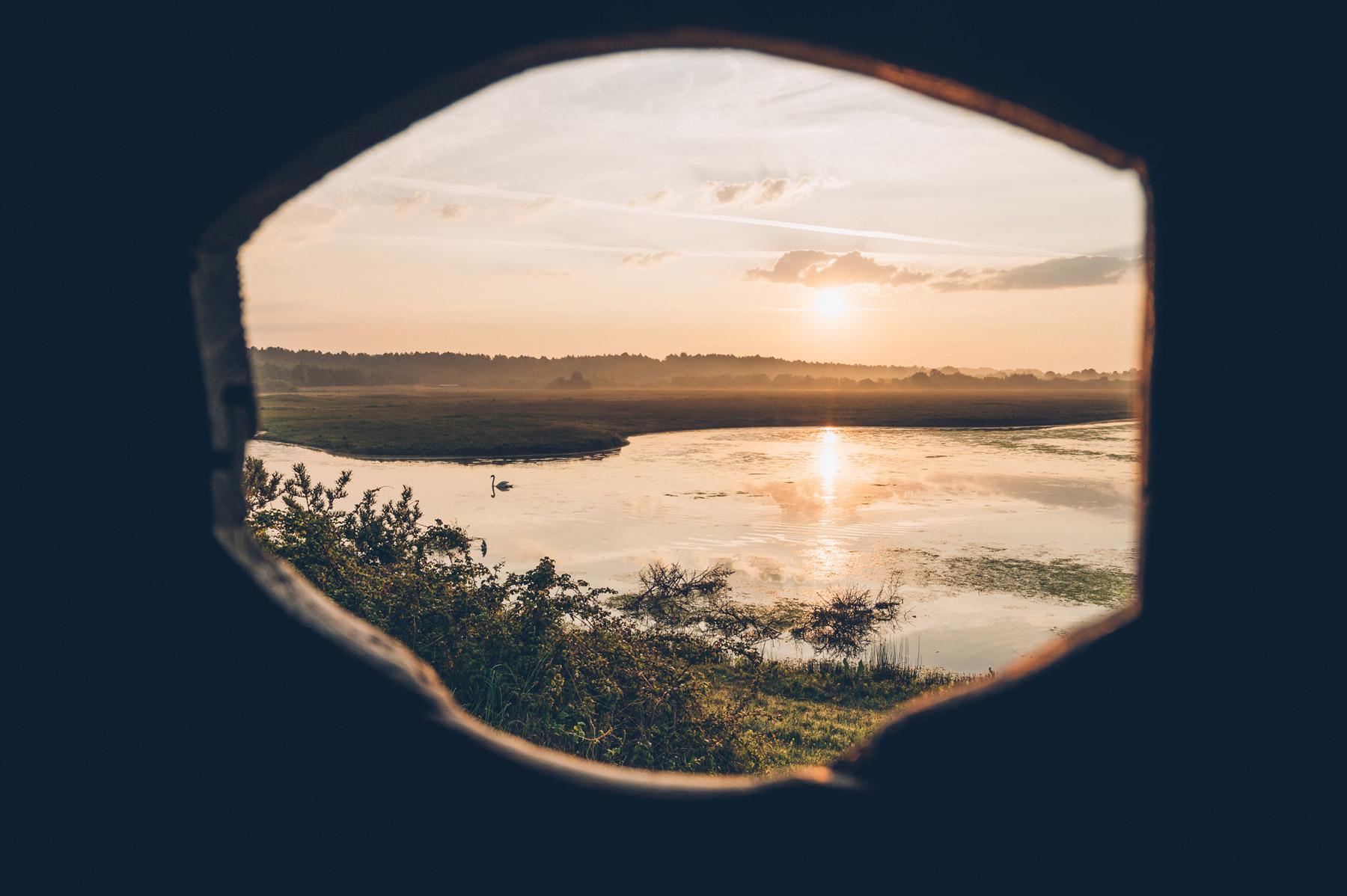 Observation oiseaux en Baie de Somme, Parc du Marquenterre