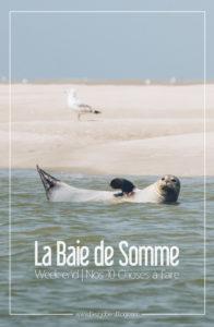Baie de Somme, 10 choses à faire pour un weekend