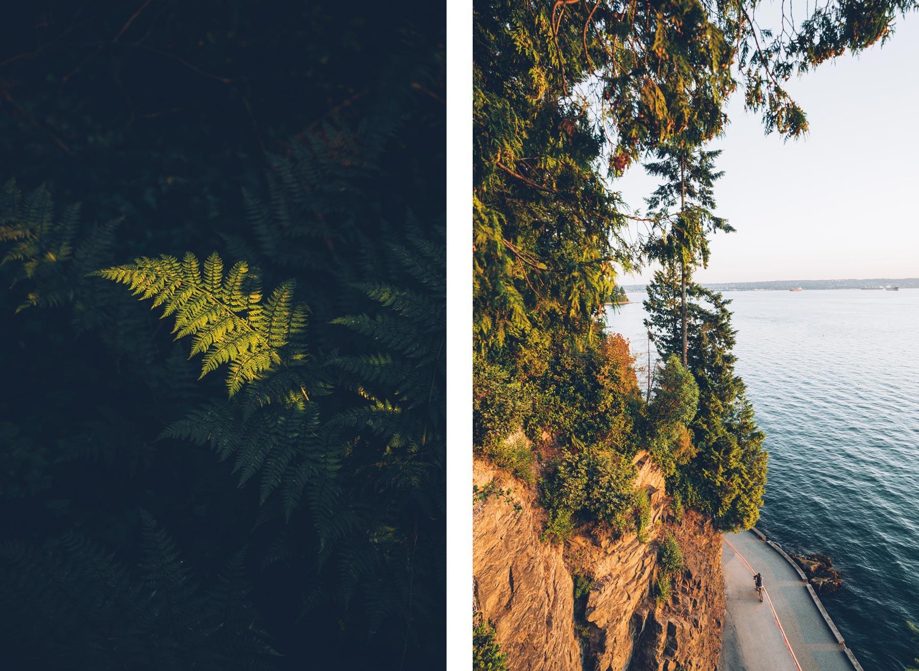 Vancouver blog voyage: Stanley Park